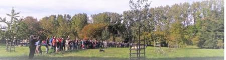 Demonstratie schapen drijven door de stadsherder van Leuven