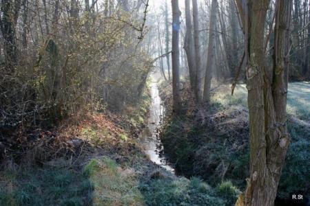 De Vlierbeek