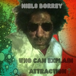 Niels Borrey - Who Can Explain Attraction?
