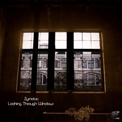 Zymotic - Looking Through Windows